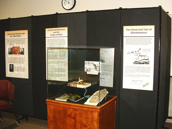 Display Area for Museum Exhibit