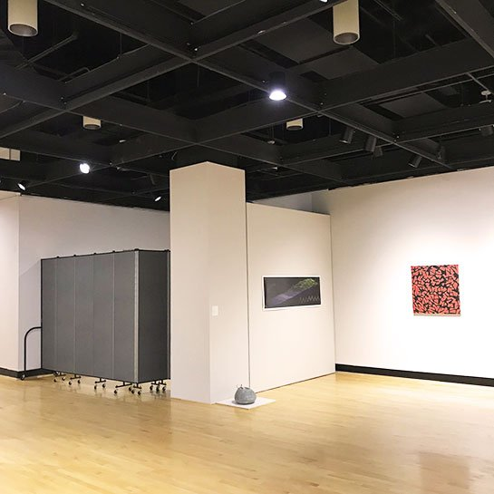 Art gallery exhibit by a portable partition